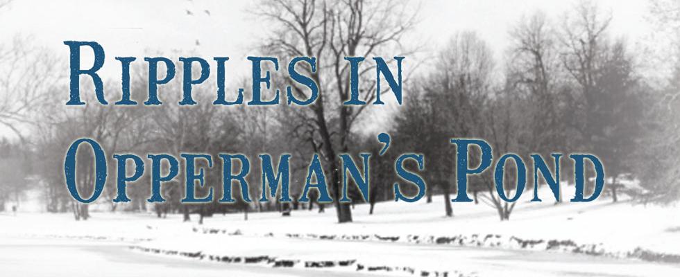 Ripples In Opperman's Pond